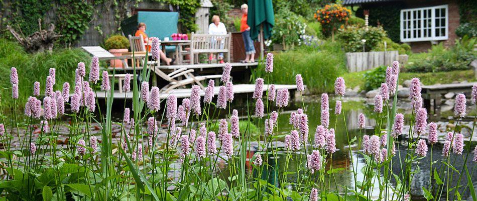 Schönfeld Garten Und Landschaftsbau Auf Sylt Gartengestaltung Und